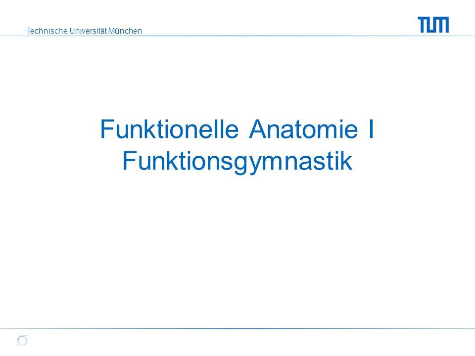 Funktionelle Anatomie Yoga Muskulatur Bewegungen Download Choice ...