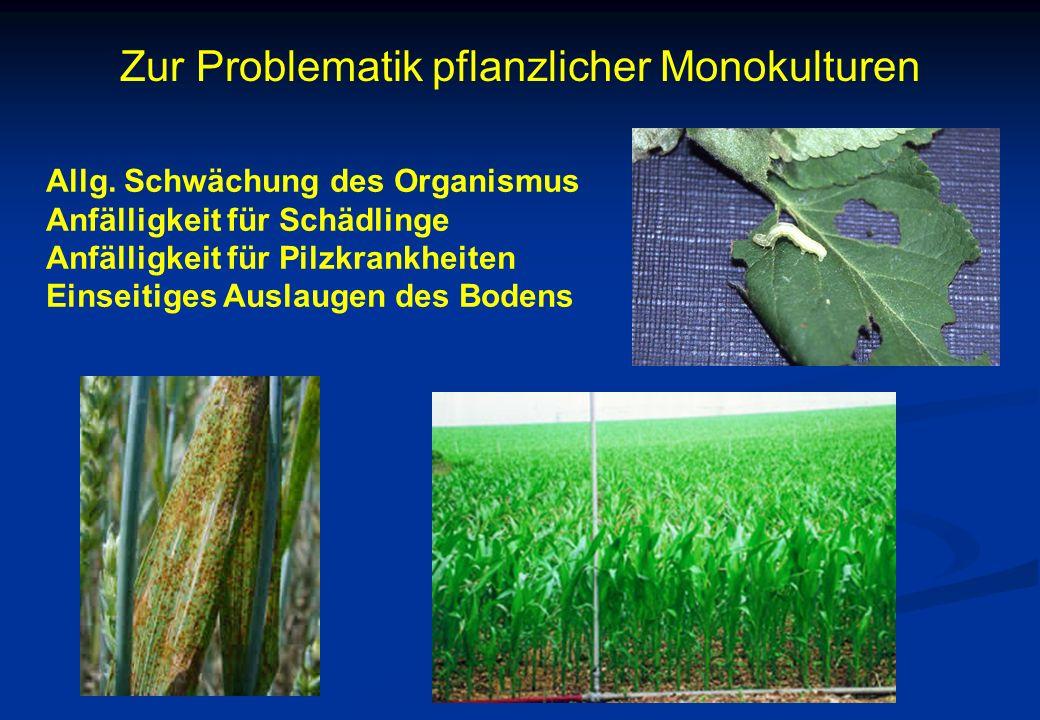 Zur Problematik pflanzlicher Monokulturen