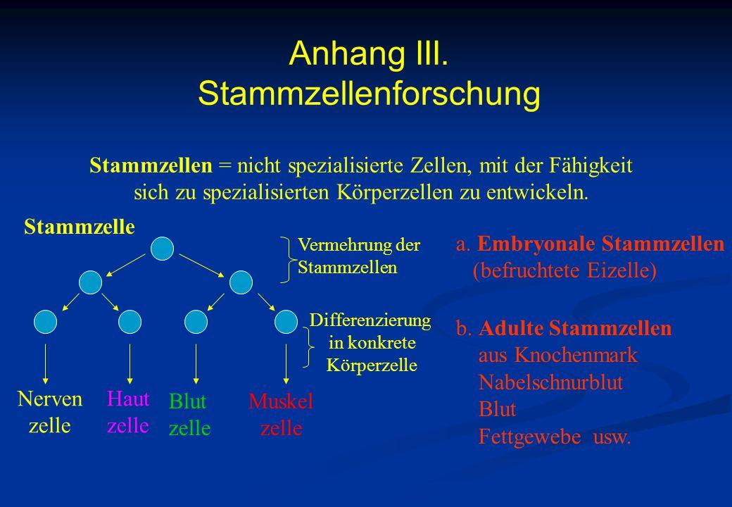 Anhang III. Stammzellenforschung