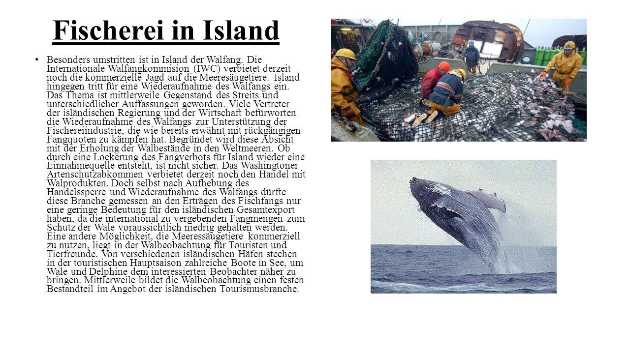 Fischerei in Island