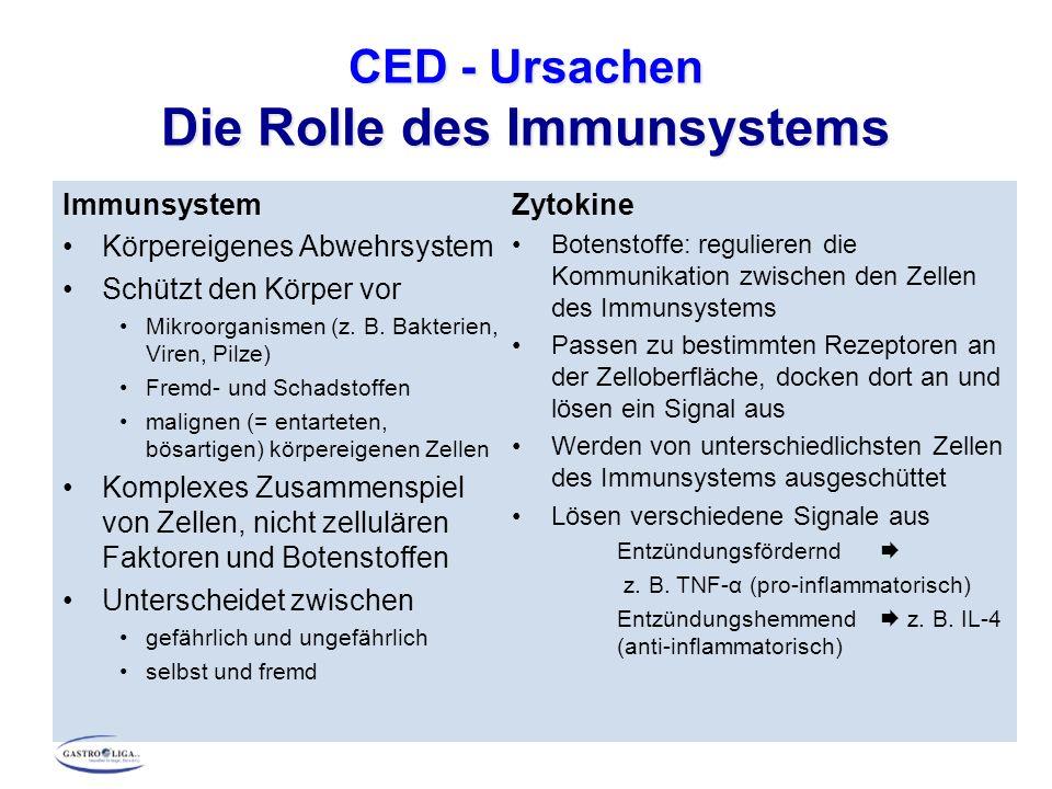 CED - Ursachen Die Rolle des Immunsystems