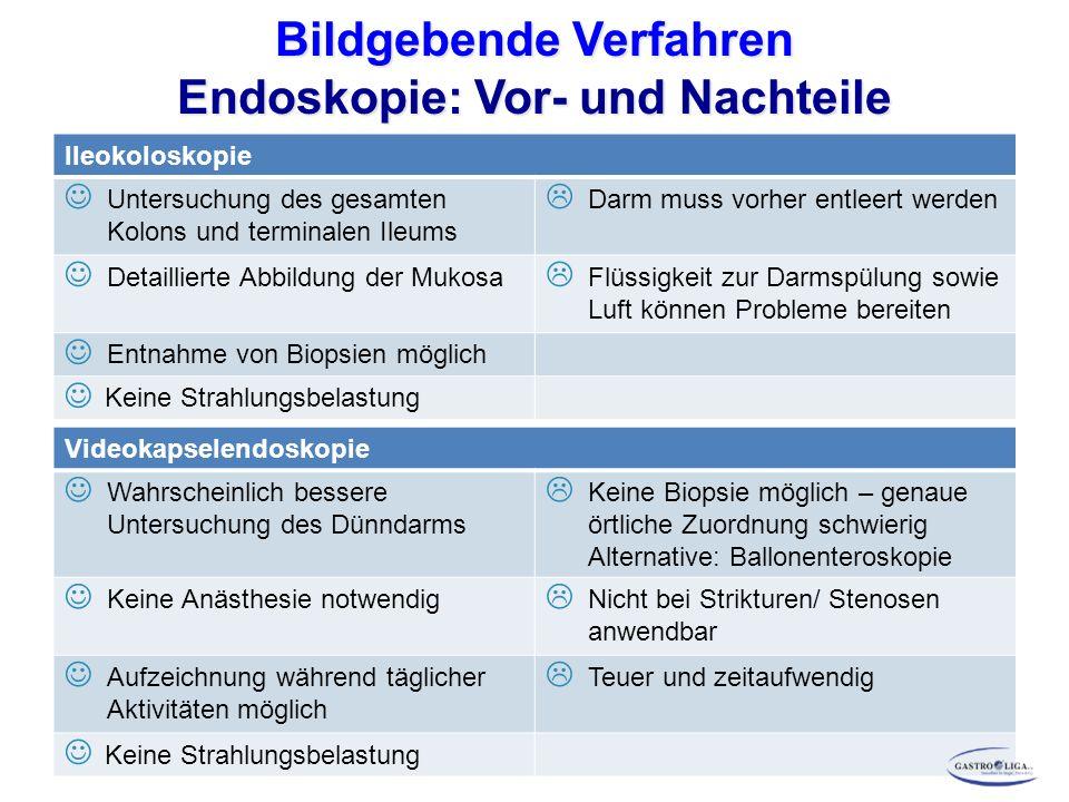 Bildgebende Verfahren Endoskopie: Vor- und Nachteile