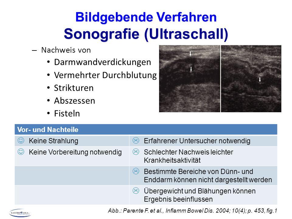 Bildgebende Verfahren Sonografie (Ultraschall)