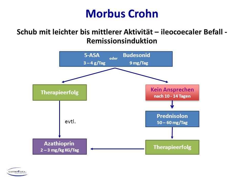 ) Morbus Crohn. Schub mit leichter bis mittlerer Aktivität – ileocoecaler Befall - Remissionsinduktion.