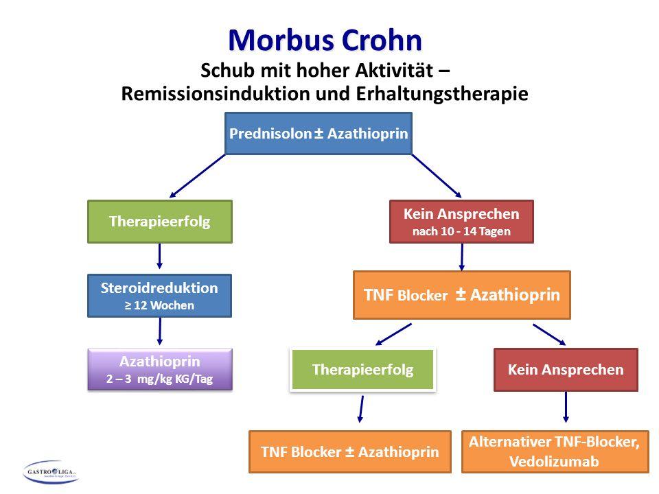 Morbus Crohn Schub mit hoher Aktivität –