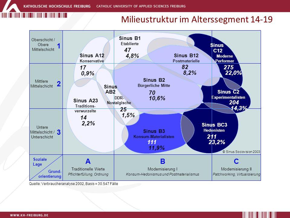 Milieustruktur im Alterssegment 14-19