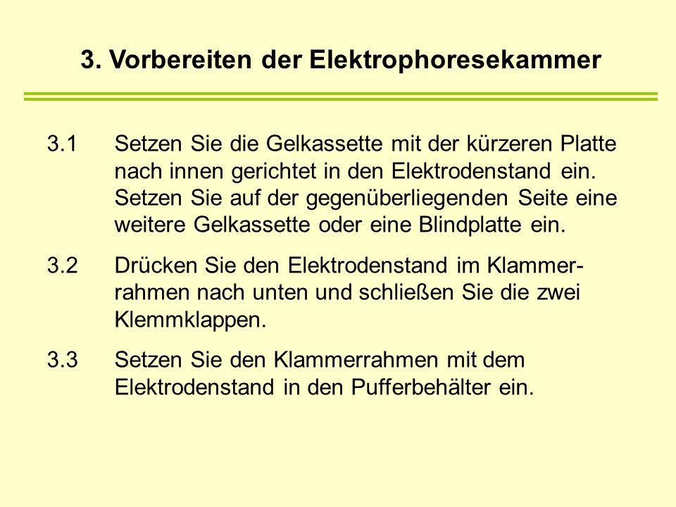 3. Vorbereiten der Elektrophoresekammer