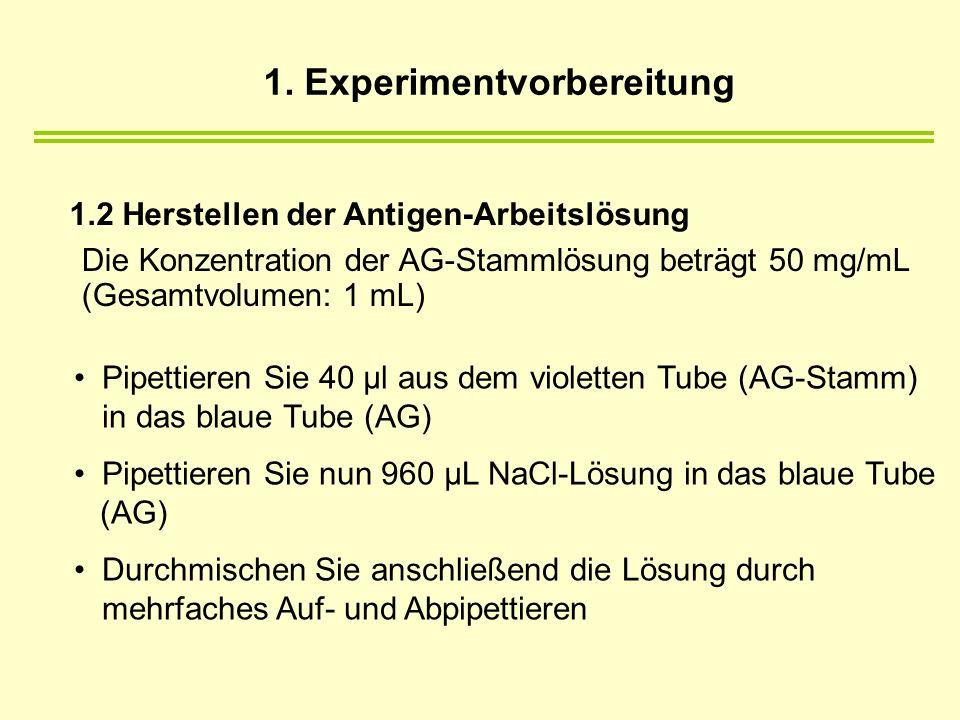 1. Experimentvorbereitung