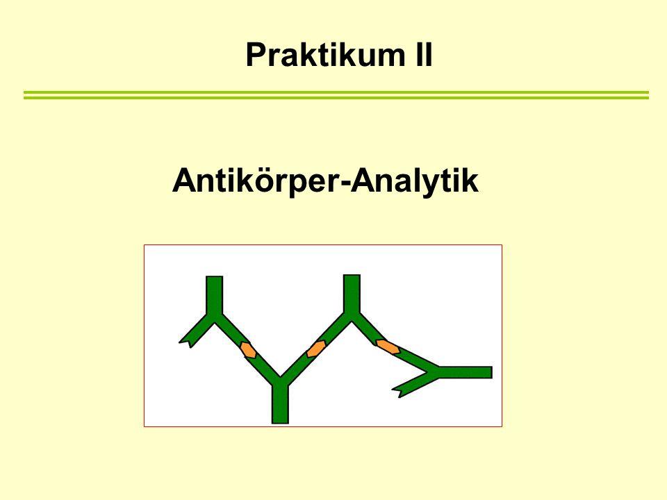 Praktikum II Antikörper-Analytik