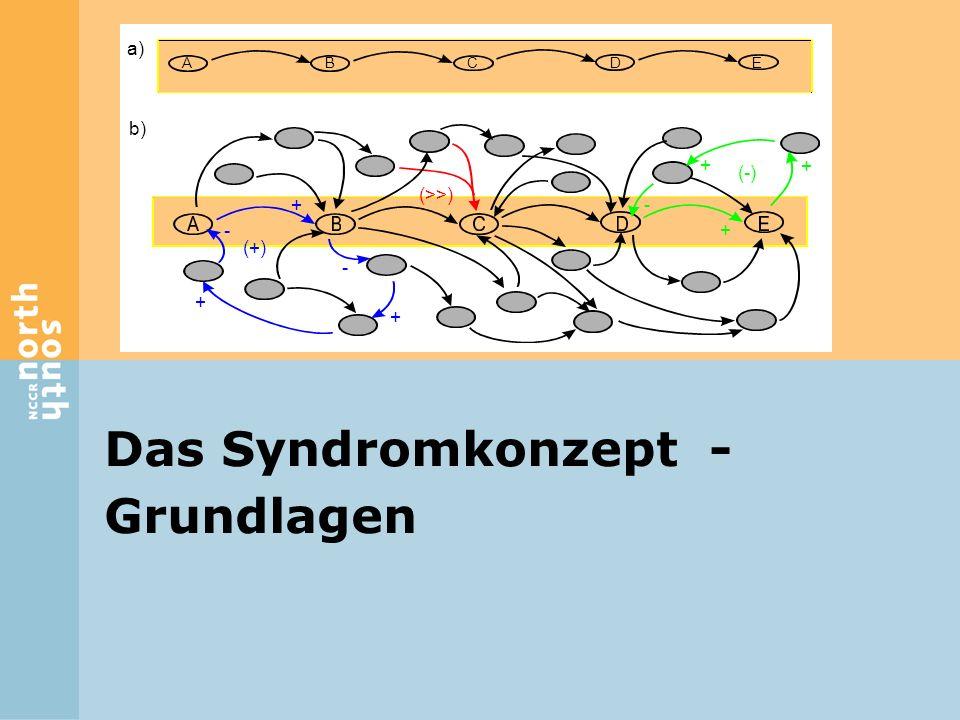 Das Syndromkonzept - Grundlagen