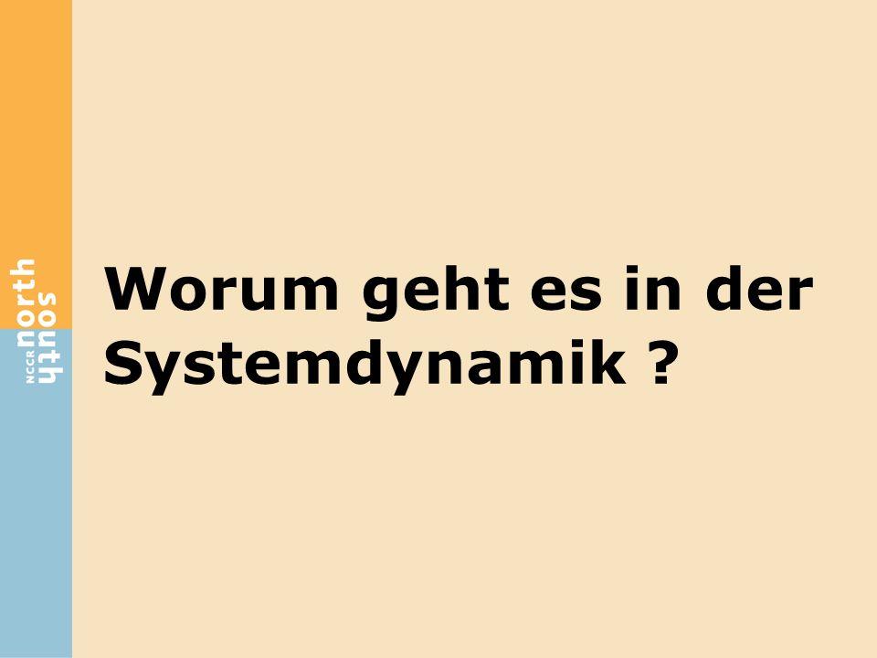 Worum geht es in der Systemdynamik