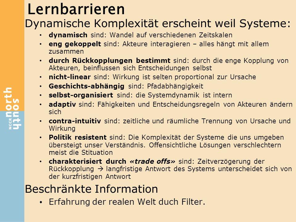 Lernbarrieren Dynamische Komplexität erscheint weil Systeme: