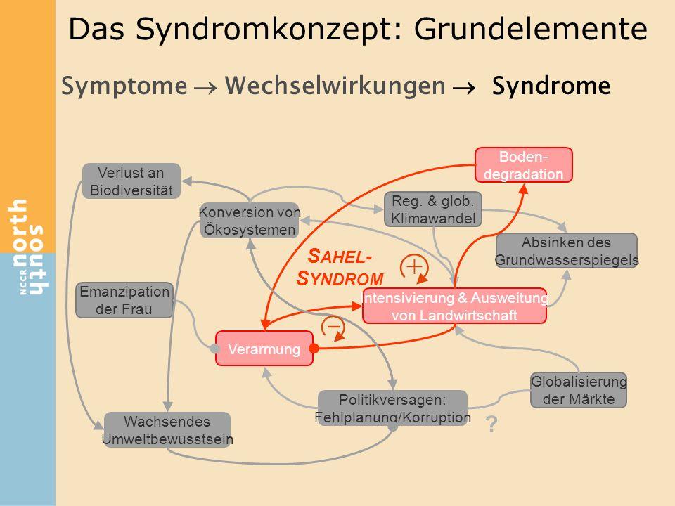 Das Syndromkonzept: Grundelemente