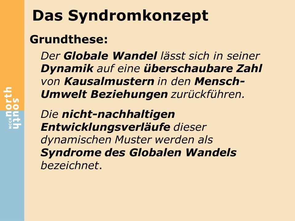 Das Syndromkonzept Grundthese: