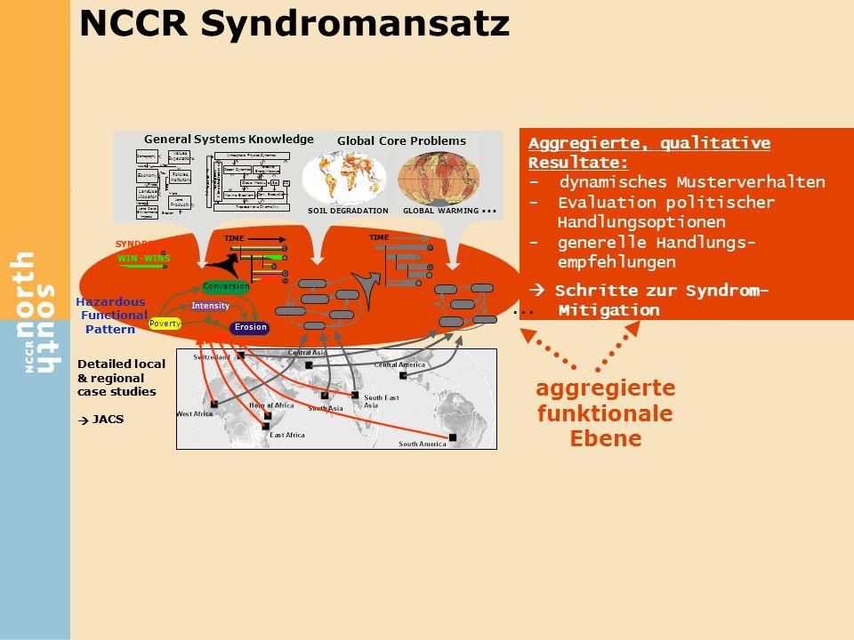 NCCR Syndromansatz ... aggregierte funktionale Ebene