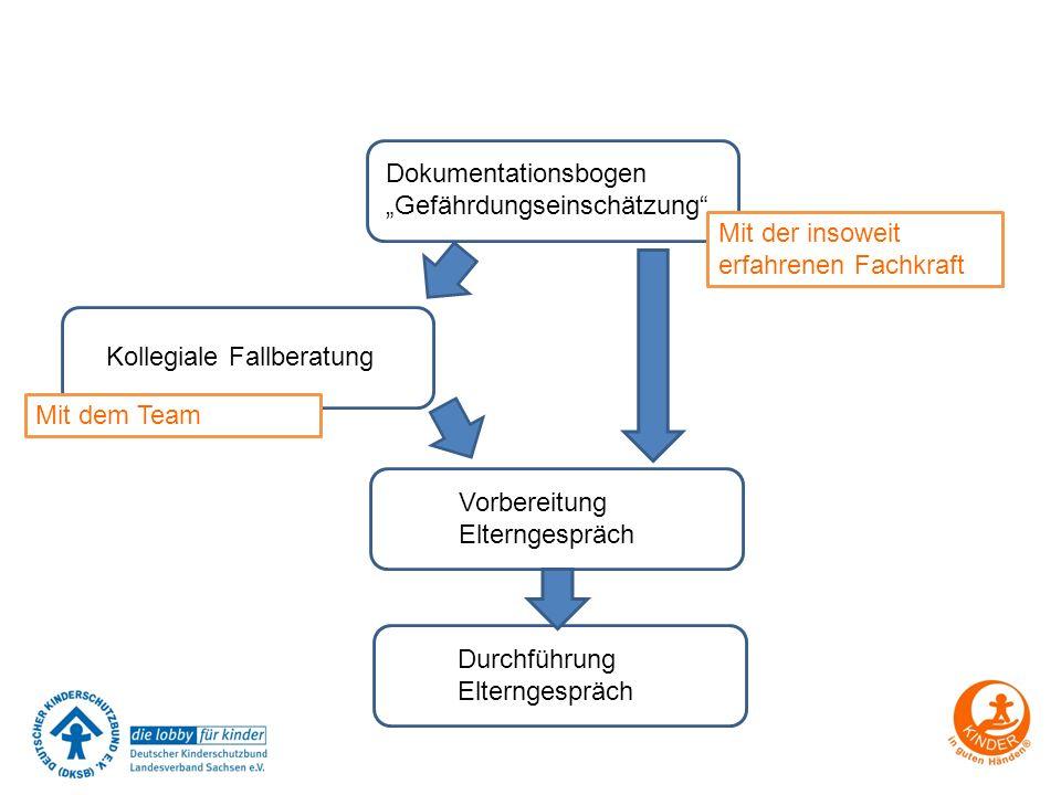 """Dokumentationsbogen """"Gefährdungseinschätzung"""