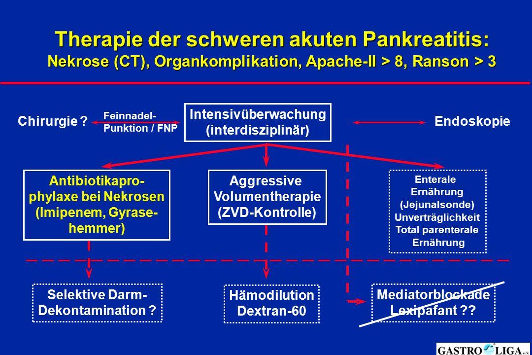 Therapie der schweren akuten Pankreatitis: