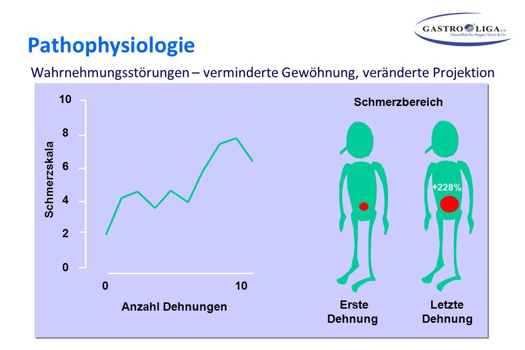 Schön Anatomie Und Physiologie Magen Zeitgenössisch - Menschliche ...