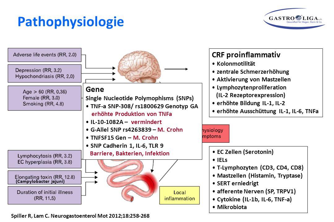 Pathophysiologie CRF proinflammativ Gene Kolonmotilität