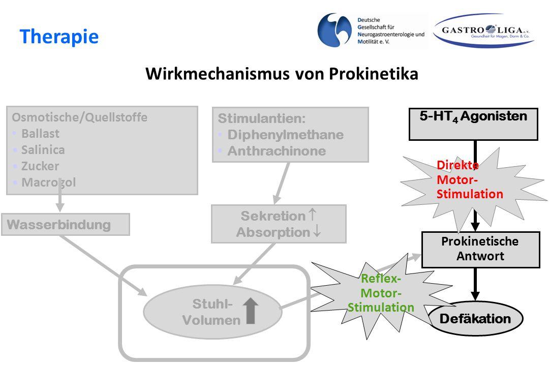 Wirkmechanismus von Prokinetika