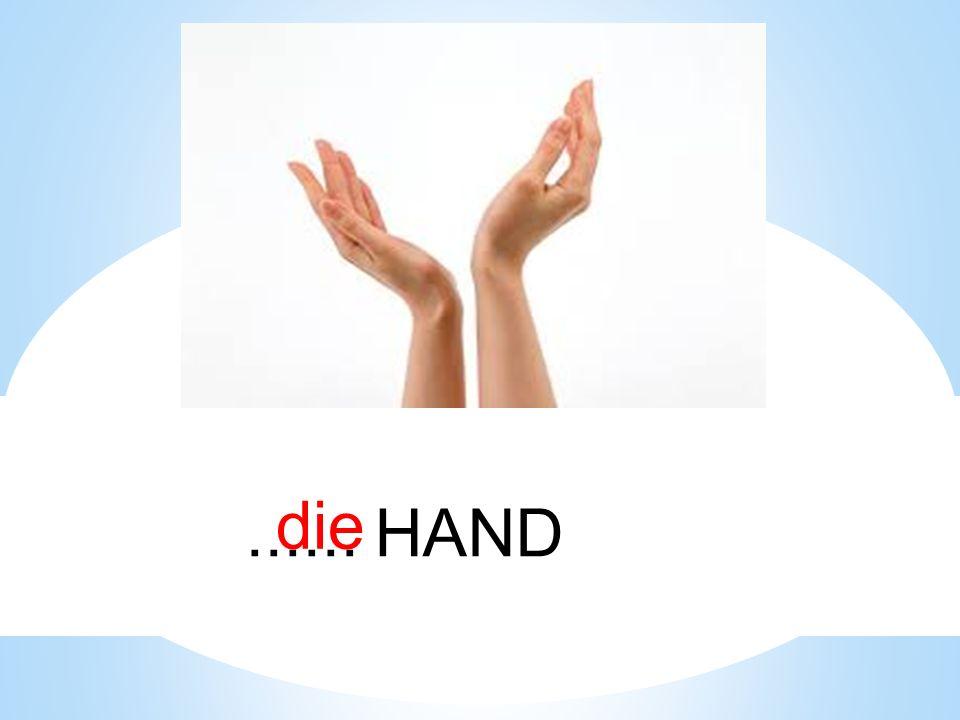 die ...... HAND