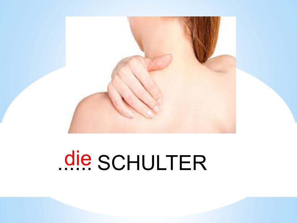 die ...... SCHULTER