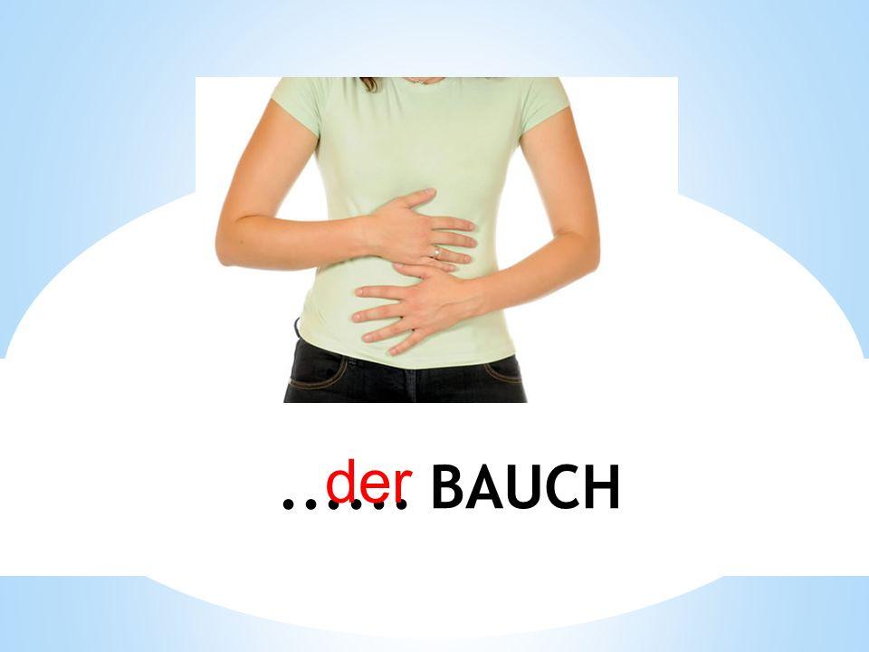 der ...... BAUCH