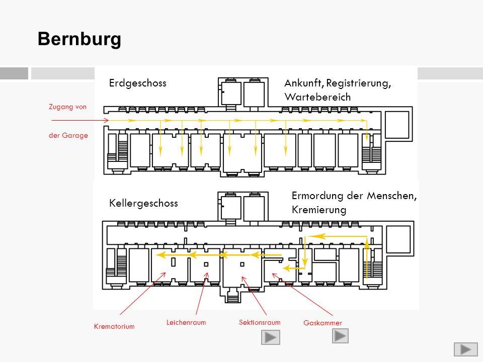 Bernburg Erdgeschoss Ankunft, Registrierung, Wartebereich