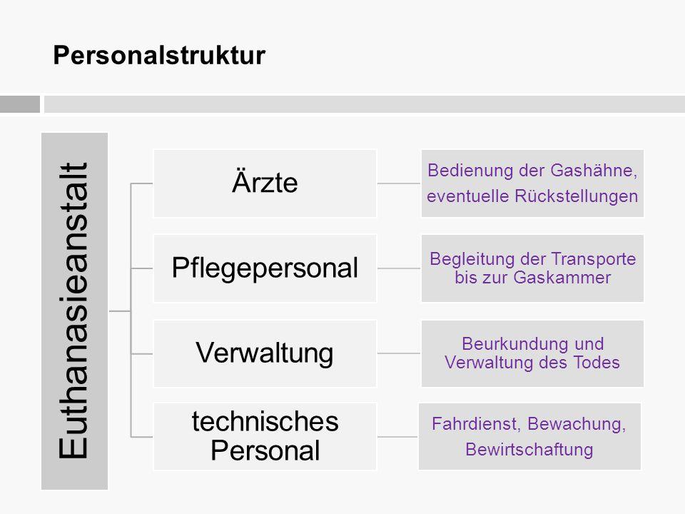 Euthanasieanstalt Ärzte Pflegepersonal Verwaltung technisches Personal