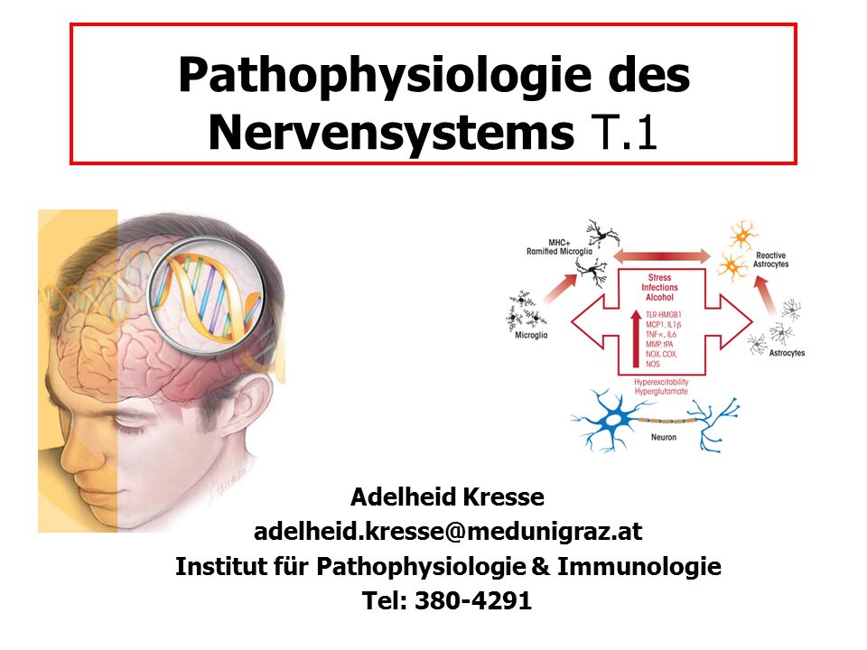 Pathophysiologie des Nervensystems T.1