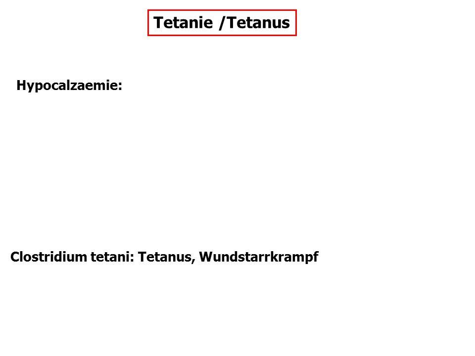 Tetanie /Tetanus Hypocalzaemie: