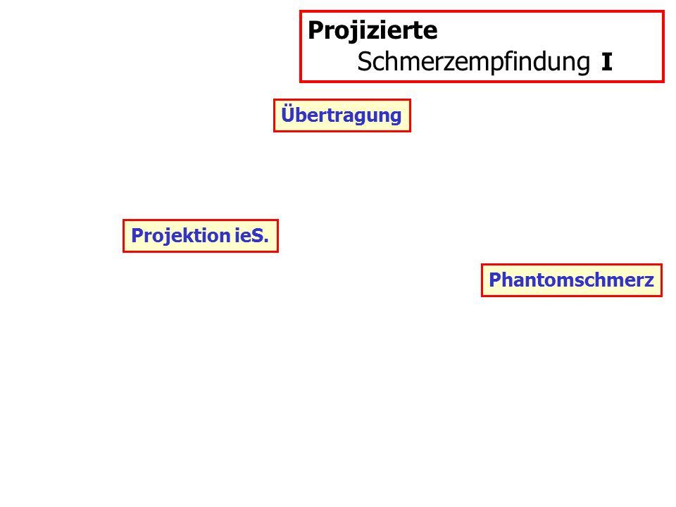 Projizierte Schmerzempfindung I Übertragung Projektion ieS.