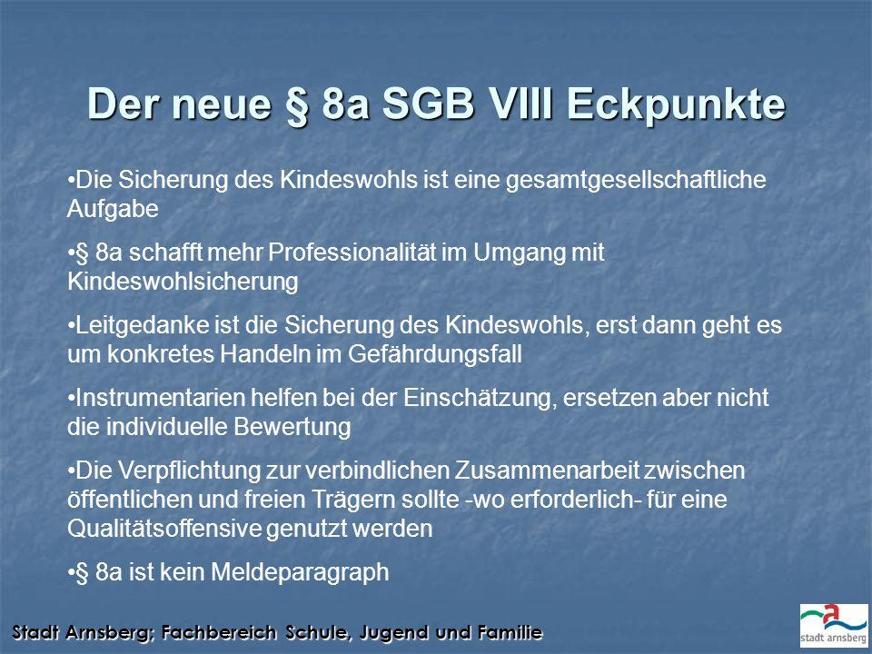 Der neue § 8a SGB VIII Eckpunkte