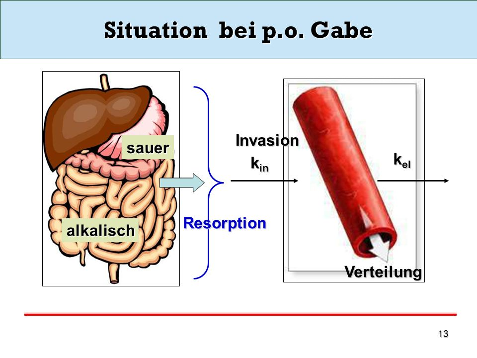 Situation bei p.o. Gabe Invasion sauer kel kin Resorption alkalisch