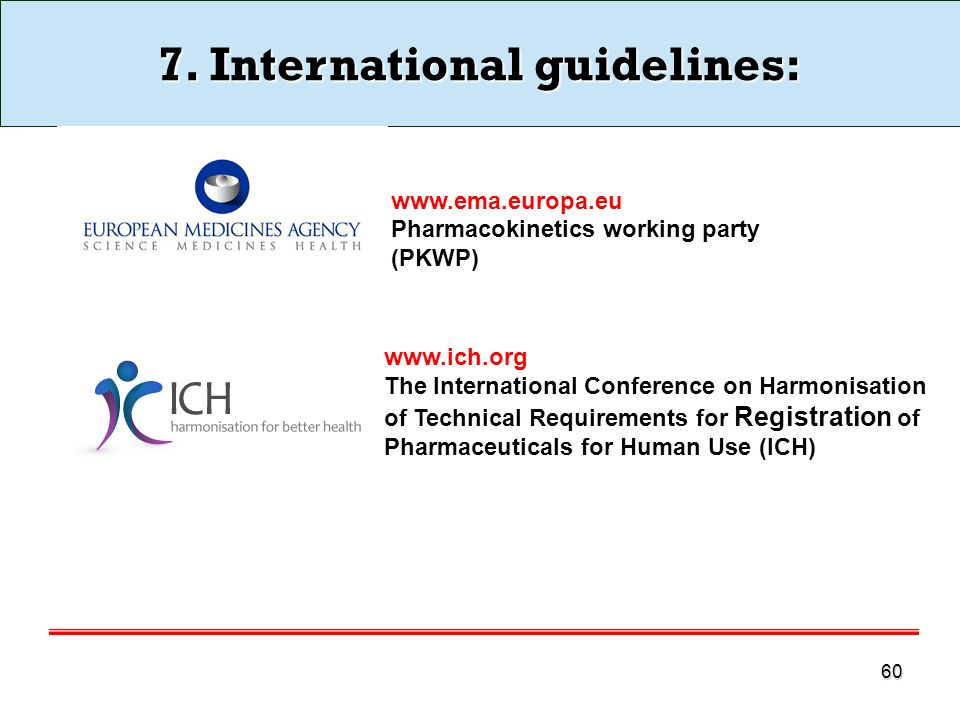 7. International guidelines: