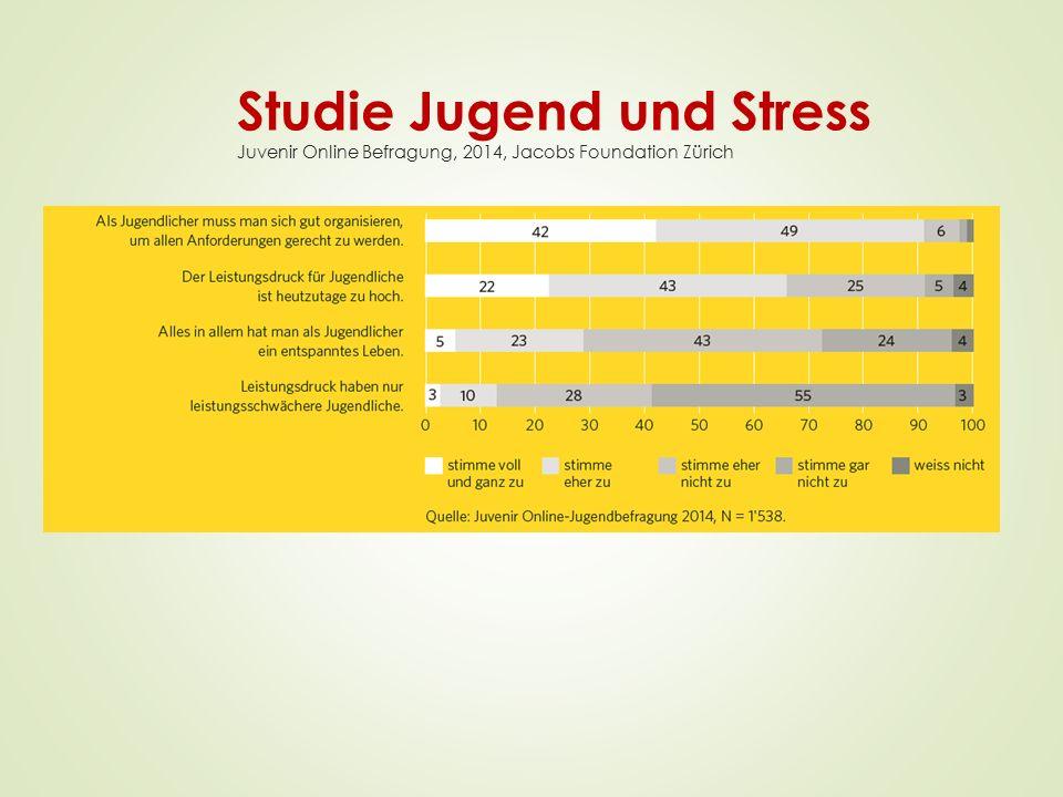 Studie Jugend und Stress Juvenir Online Befragung, 2014, Jacobs Foundation Zürich