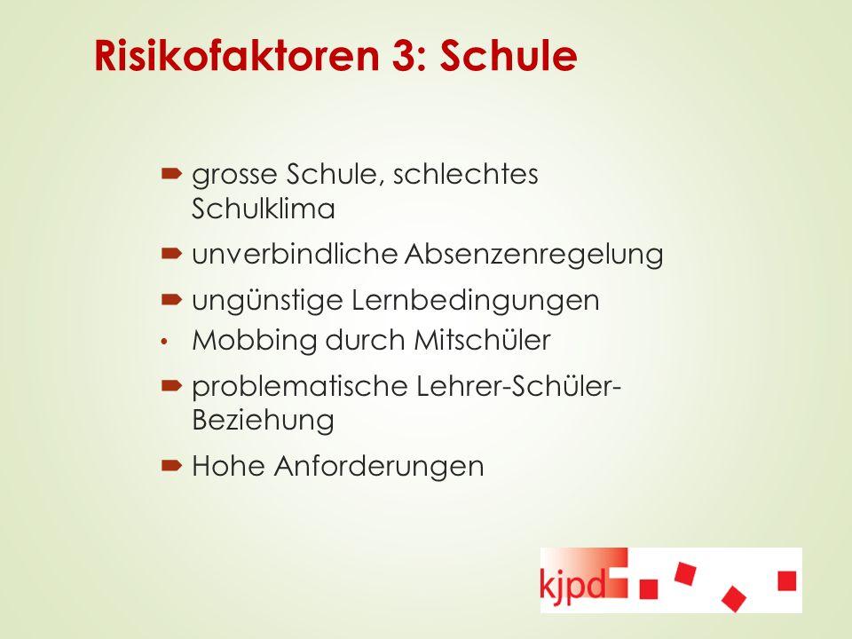 Risikofaktoren 3: Schule