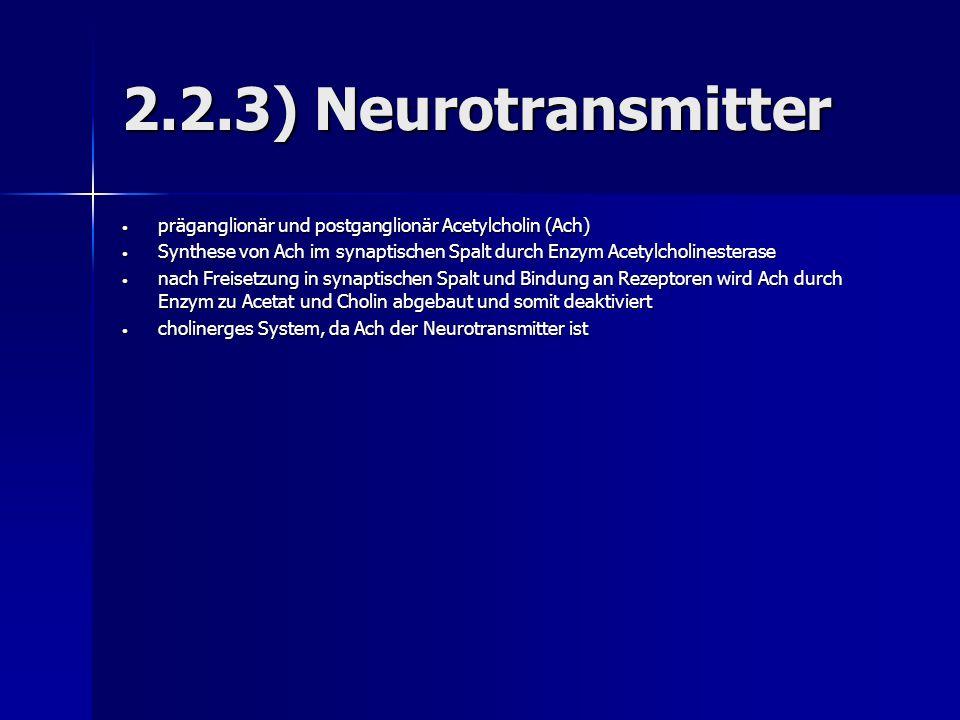 2.2.3) Neurotransmitter präganglionär und postganglionär Acetylcholin (Ach) Synthese von Ach im synaptischen Spalt durch Enzym Acetylcholinesterase.