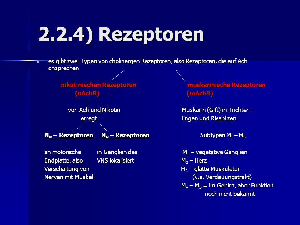 2.2.4) Rezeptoren es gibt zwei Typen von cholinergen Rezeptoren, also Rezeptoren, die auf Ach ansprechen.