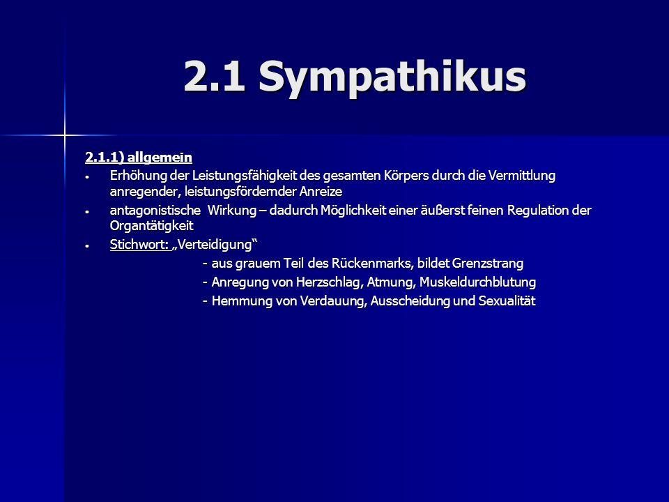2.1 Sympathikus 2.1.1) allgemein