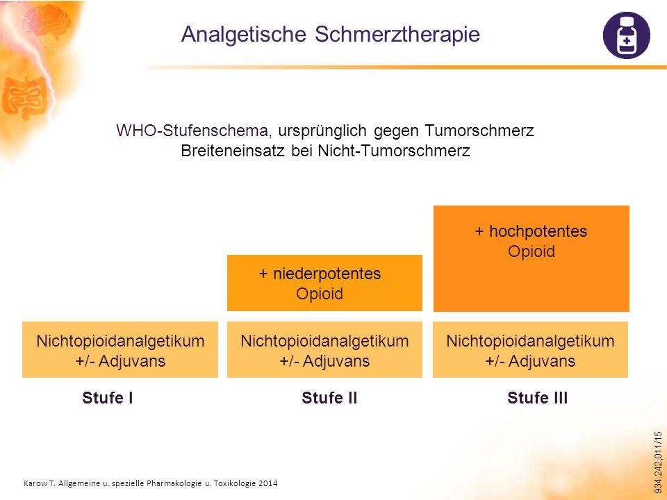 Analgetische Schmerztherapie