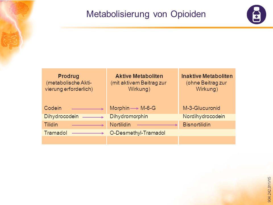 Metabolisierung von Opioiden