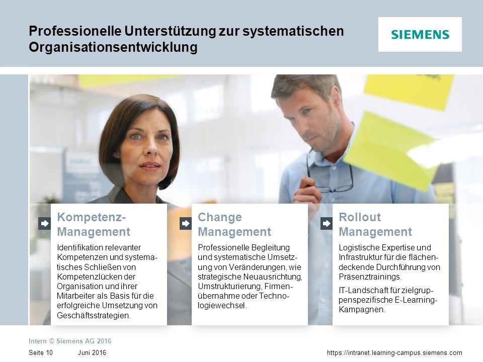 Professionelle Unterstützung zur systematischen Organisationsentwicklung