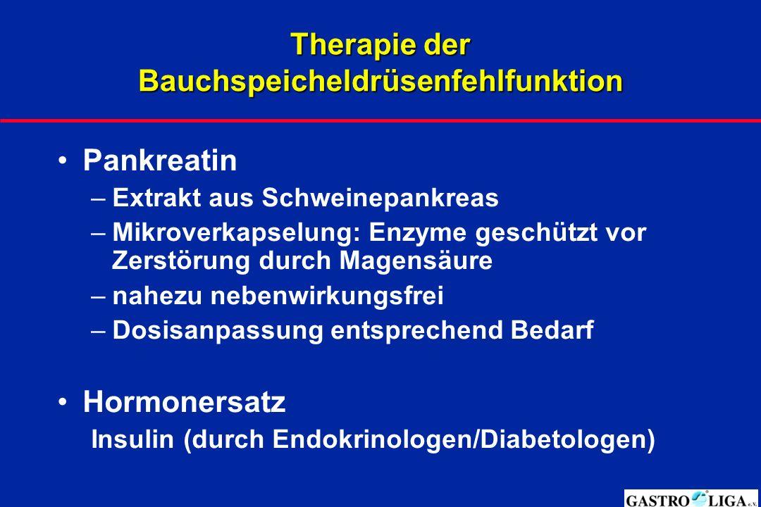 Therapie der Bauchspeicheldrüsenfehlfunktion