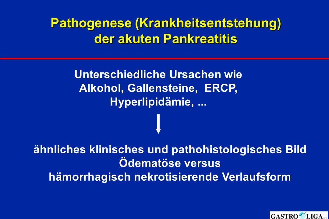 Pathogenese (Krankheitsentstehung) der akuten Pankreatitis