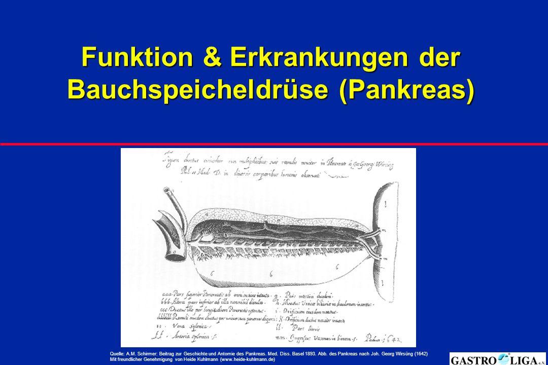 Funktion & Erkrankungen der Bauchspeicheldrüse (Pankreas)