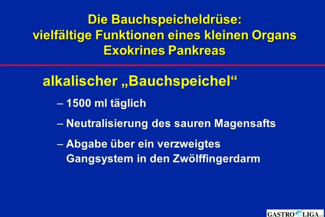"""alkalischer """"Bauchspeichel"""