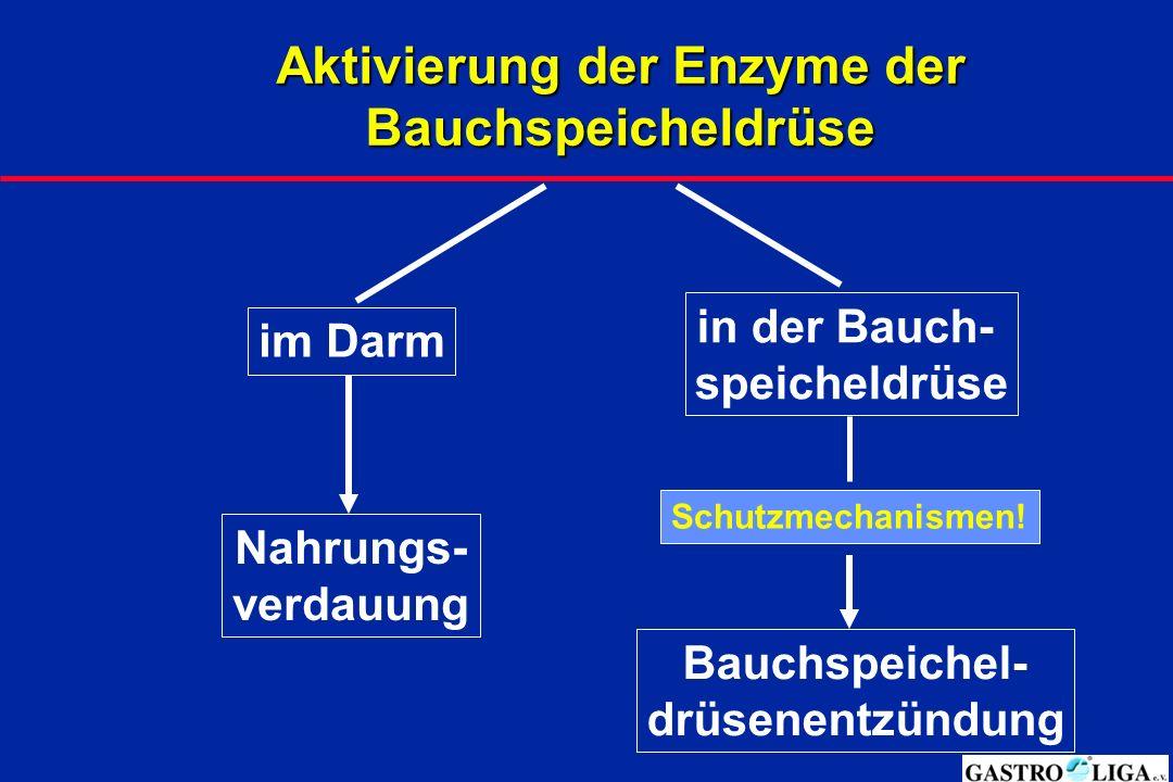 Aktivierung der Enzyme der Bauchspeicheldrüse
