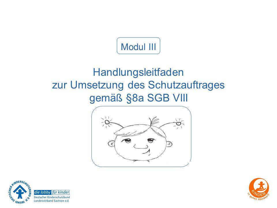 zur Umsetzung des Schutzauftrages gemäß §8a SGB VIII