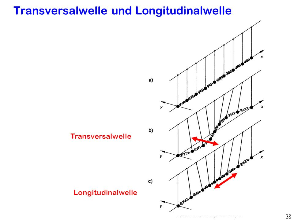 Transversalwelle und Longitudinalwelle